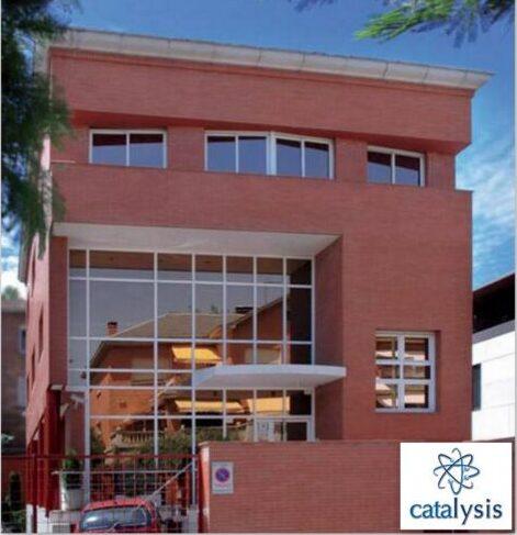Знакомство с компанией Catalysis, S.L.