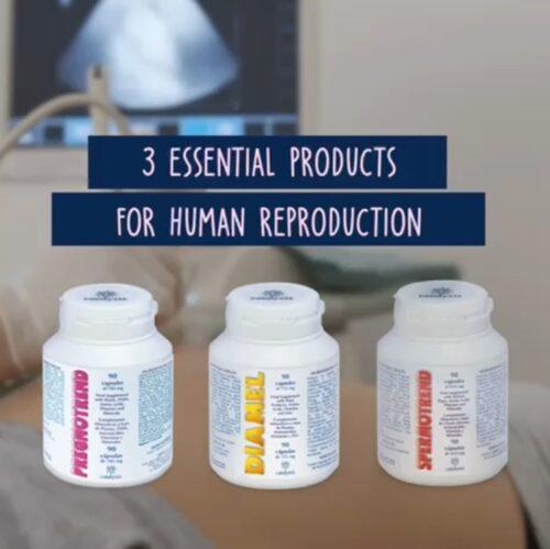 Основные продукты для репродукции человека